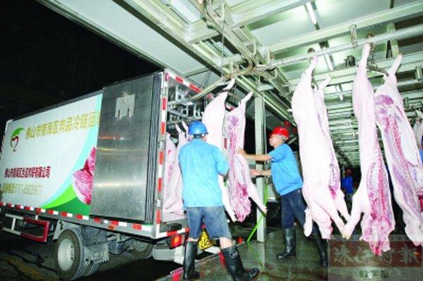 可获万元补贴生猪肉实行统一冷链配送